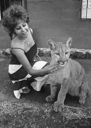 Image: di92056 - Sylvia Martinez Krull with her cat Shena