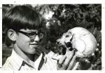di02637 - Tommy Turner, 13, looks at old Indian skull